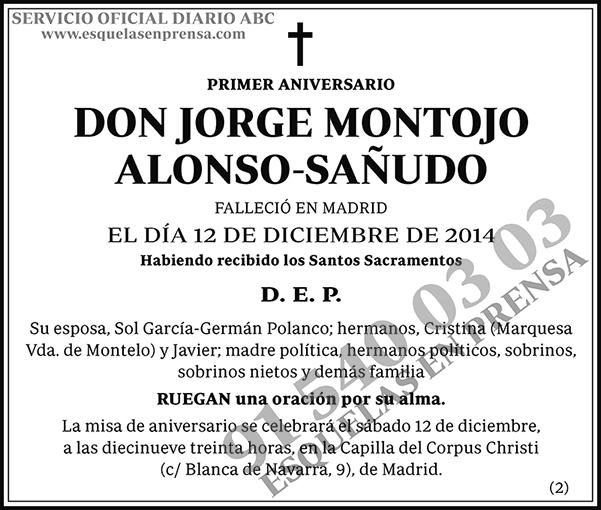 Jorge Montojo Alonso-Sañudo